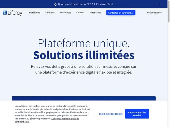 Meilleur logiciel de gestion de portail Internet : Liferay, Readyportal